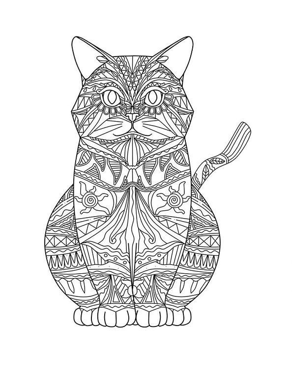 Mandala Gato Pequeño Para Colorear Sr Bigotes De Gatos