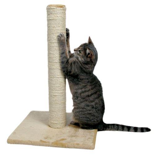 Gato afilándose las uñas en un rascador de lazo