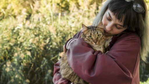 Abrazando y cuidando a un gato