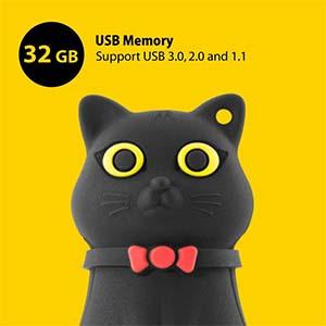 Memoria USB de Gatos