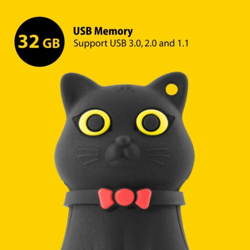 USB de Gato